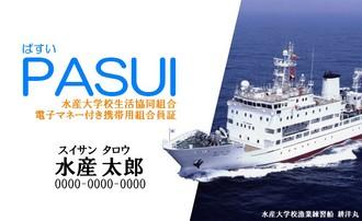 PASUI.jpg